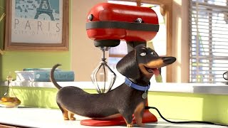 Buddy the Dog – THE SECRET LIFE OF PETS Movie Clip