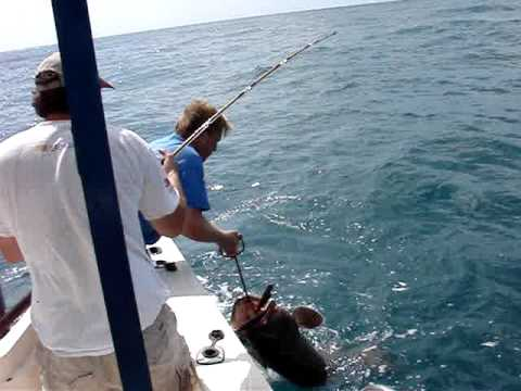 Ric 39 s rocky point fishing puerto penasco youtube for Puerto penasco fishing