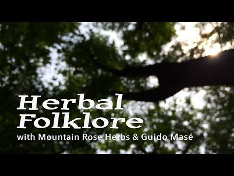 Herbal Folklore: Mugwort by Guido Masé