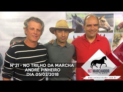 #21 - NO TRILHO DA MARCHA 05/02/2018 - MANGALARGA MARCHADOR HD