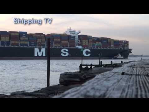 Local shipping, 4th & 5th March 2014