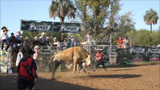 ONCE RODEO,FINAL ESTATAL,MONTA DE TORO