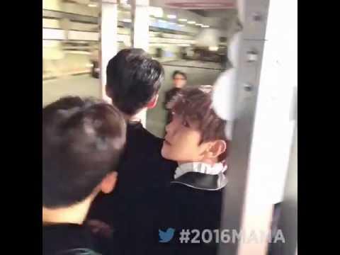 EXO at 2016 MAMA Red Carpet