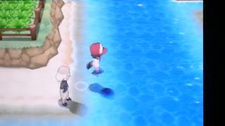 Pokemon X & Y Where To Find Leftovers (item)