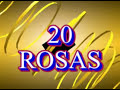 20 Rosa Angeles Azules