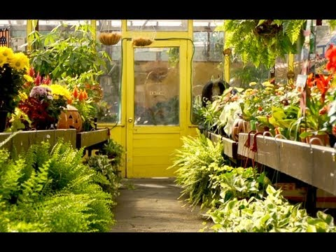New Gardener's Guide to Shopping at a Garden Center