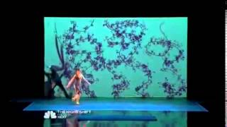 America's Got Talent 2014 Blue Journey Shadow Act