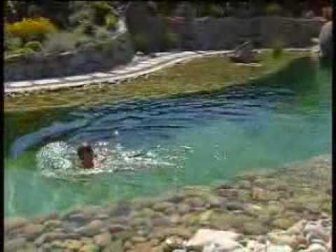 Aquaviva Natural Swimming Pool Clip Youtube