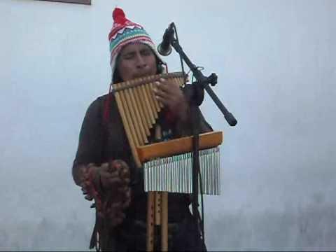 Como Zaqueu - sucesso de Regis Danese interpretada pela Flauta dos Andes