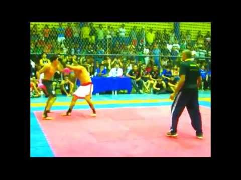 III -- INTERESTADUAL DE KUNG FÚ E BOXE CHINÊS.