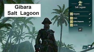Assassin's Creed 4 Gibara Salt Lagoon:All Collectibles