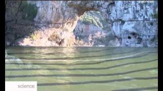 32 bin yıllık mağara resimleri Fransada bulundu