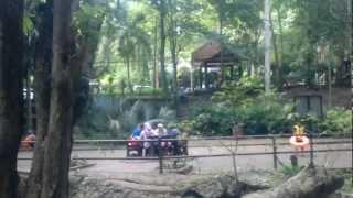 Taman Rekreasi Gua Kelam Perlis view on youtube.com tube online.
