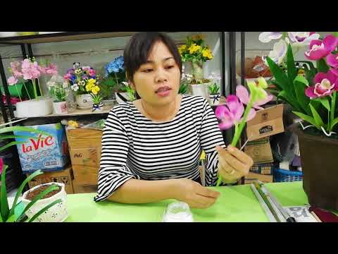 Hường dẫn làm hoa lan Mokara - Part 4