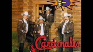 Cariño (audio) Cardenales de Nuevo Leon