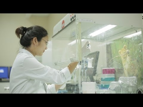 Department of Microbiology, Faculty of Science, Chulalongkorn University, Thailand