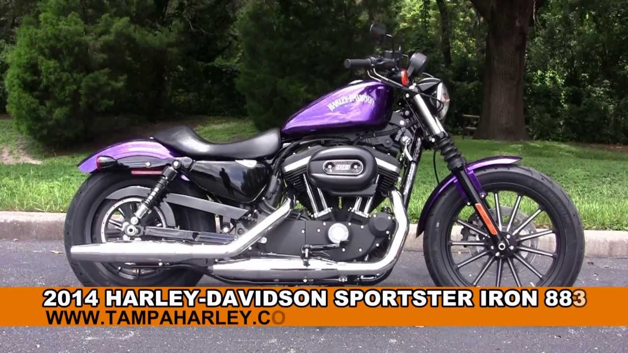 New 2014 Harley 883 Iron Review And Price Release And Price On Prices