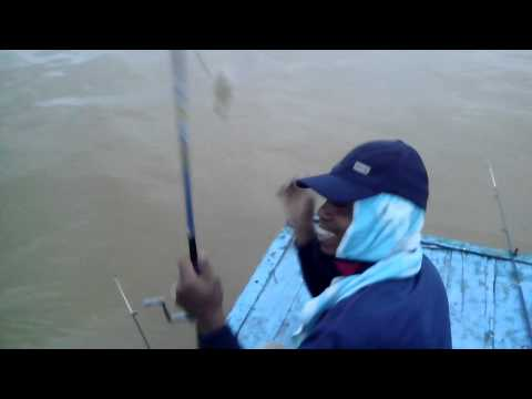memancing udang galah diburitan kapal gp