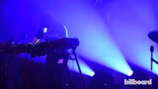 VIDEO: Animal Collective at Bonnaroo