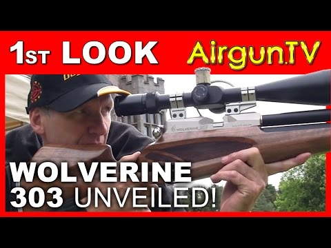 UNVEILED! Wolverine 303 cal air gun