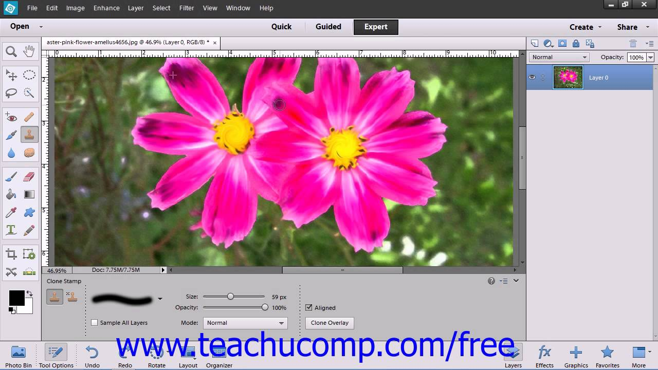 Photoshop Elements 12 Tutorial The Clone Stamp Tool Adobe Training ...