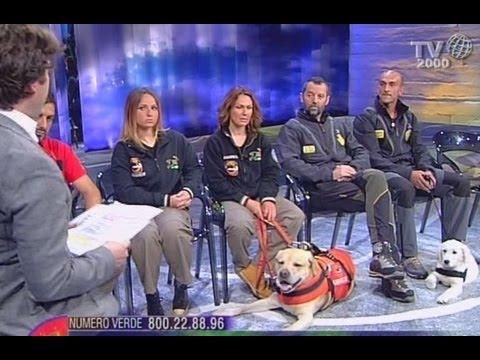 I cani del  Soccorso Alpino e Speleologico