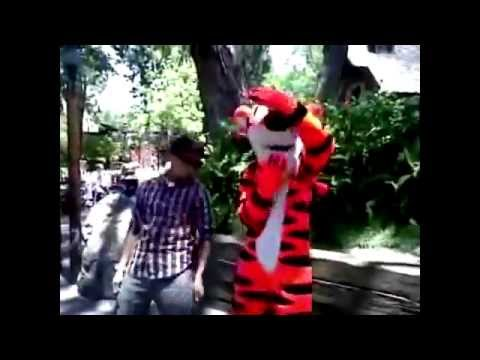 Tigger Got Swag so funny