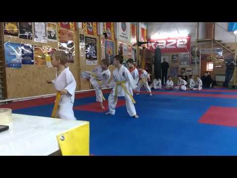 Аттестационный экзамен по каратэ 6 марта 2016 года в спортивном клубе Тигренок