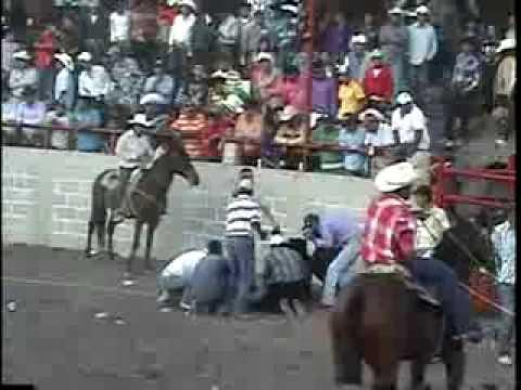 ACCIDENTES EN EL JARIPEO POTOSINOS (MONTAS EN EL PASO DE GUADALUPE 2011)