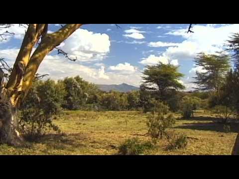 Naivasha Travel Guide