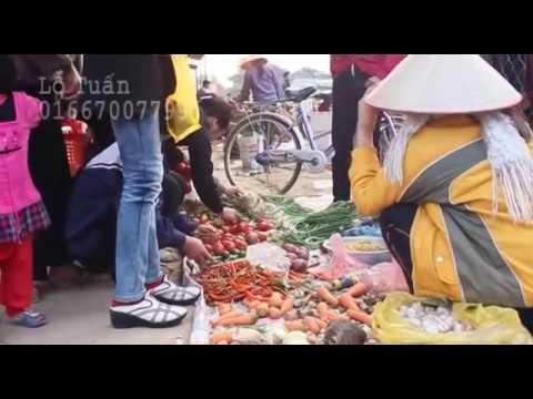 Chợ tết Đoan Hạ - Thanh Thủy - Phú Thọ