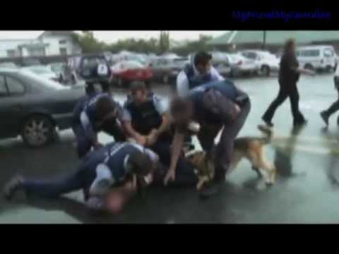 *K-9 Edition*    Dogs of the Force!!, This is a Video I put together in my spear time with just basic editing software, to appreciate the life's saved by these dogs and there amazing agility and ...
