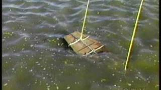 Escape Artist Dies In Failed Underwater Coffin Escape On