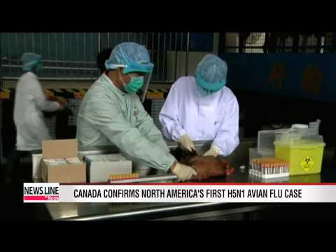 Canada confirms North America's first H5N1 avian flu case