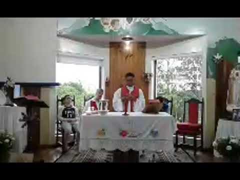Santa Missa | 12.11.2020 | Quinta-feira | Padre Francisco de Assis | ANSPAZ