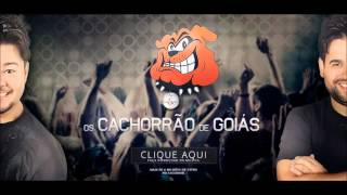 Os Cachorrão de Goiás - Youtube