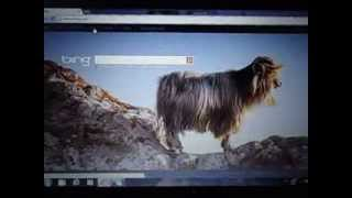How To Remove BING From GOOGLE CHROME