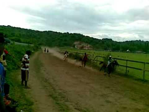 Pacuan Kuda Bima Sumbawa, NTB Tahun 2013