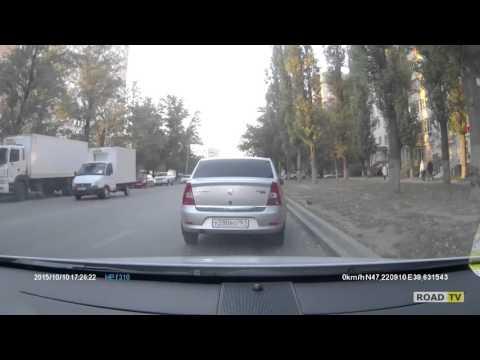 Голубь на дороге - тройное ДТП