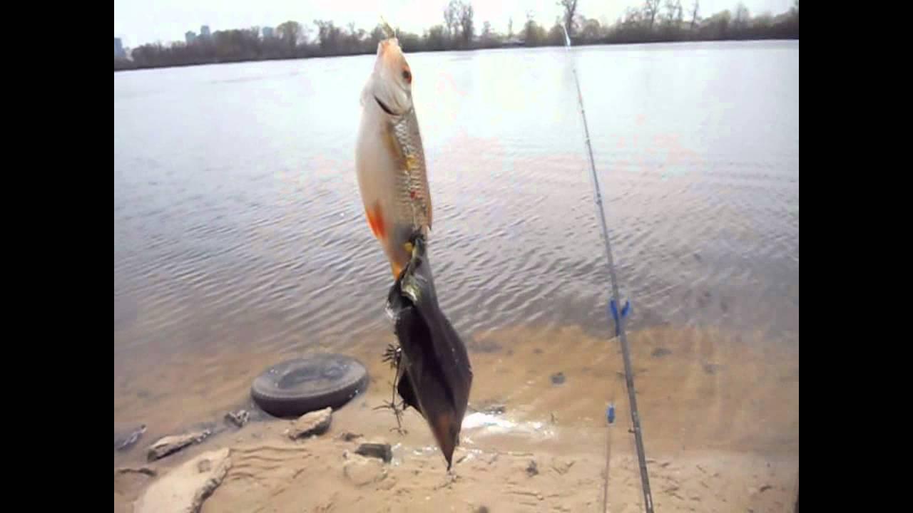 стоимость рыбалка на днепре