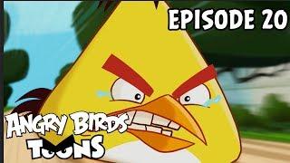 Angry Birds Toons #20 - Utíkej, Chuck utíkej
