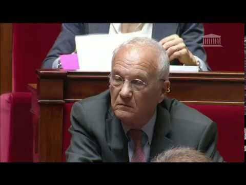 M. Gilles Carrez - Pouvoir d'achat en France