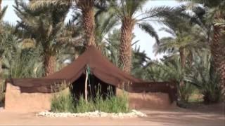 Camping Les Palmiers Zagora Tagounite