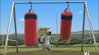 Medveď Bernard - Rugby