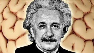 Einstein Brain Secret Revealed? -- Mind Blow #72