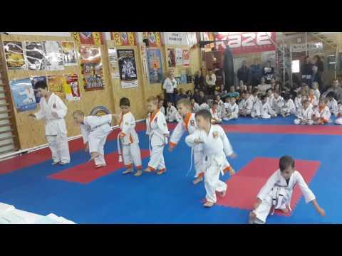 Аттестационный экзамен 09.10.2016 г. по каратэ в клубе Тигренок ч. 2