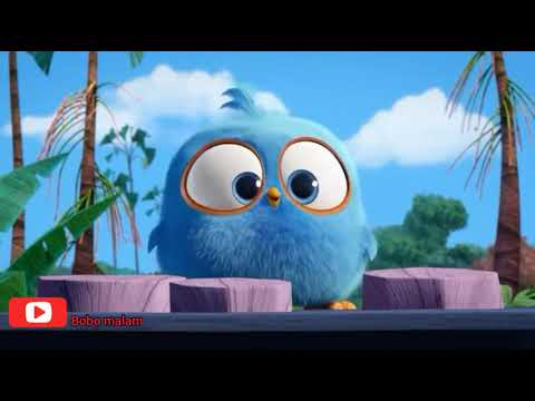 Dance funny Angry birds || Tones And I - Dance Monkey