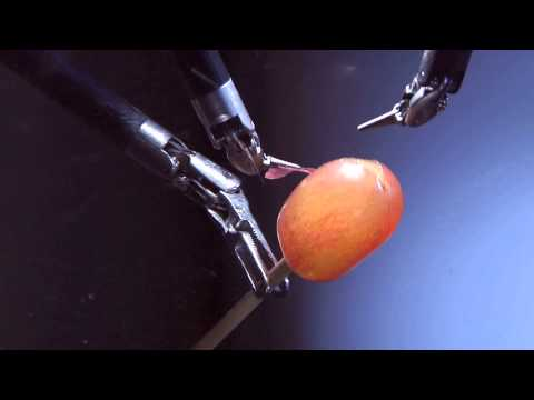 Robotic Surgery - Peeling a Grape Clip