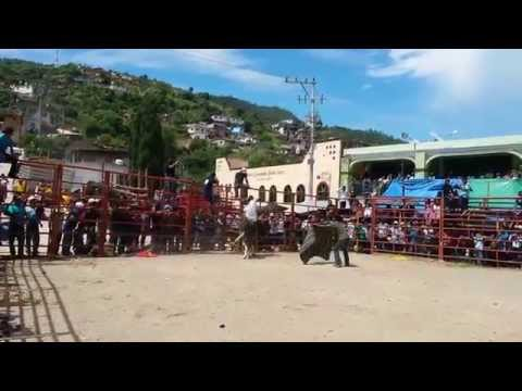 JARIPEO RANCHERO 2014