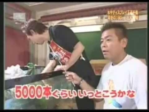 Tv Champion นักจัดตู้ปลา (เก่า)
